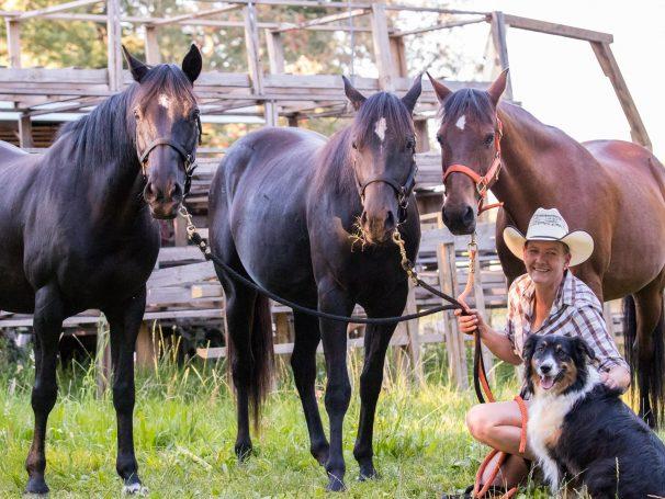Classic-Western-Pferde